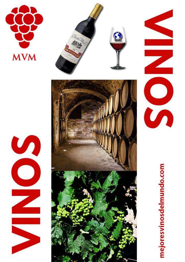 Cuáles son los mejores vinos del mundo. Cada una de las fases que conforman la elaboración de un vino determinan la calidad de los caldos. En mejores vinos del mundo hablamos de cada una de estas fases que logran los mejores vinos del mundo.