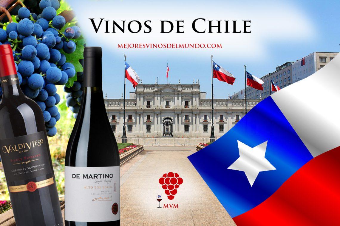 La exclusividad de los vinos chilenos.