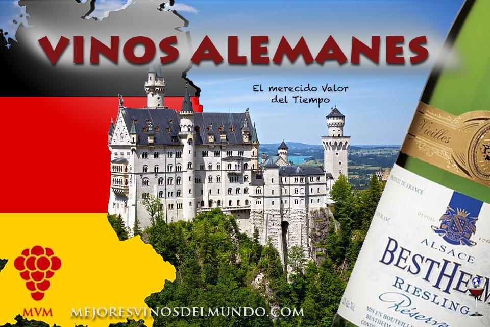 Si quieres saber la gran aportación de los vinos alemanes sigue leyendo.