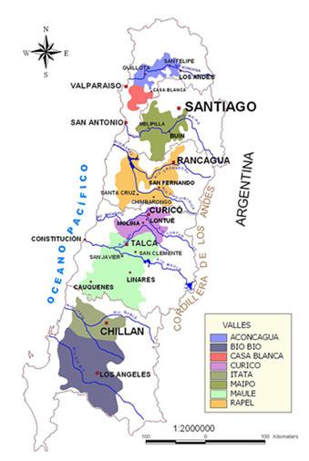 La conservación de los vinos chilenos. La barrera natural que conforma el Pacífico, la cordillera de los Andes y el poderoso clima impidieron que la filoxera entrara en esta zona del continente.