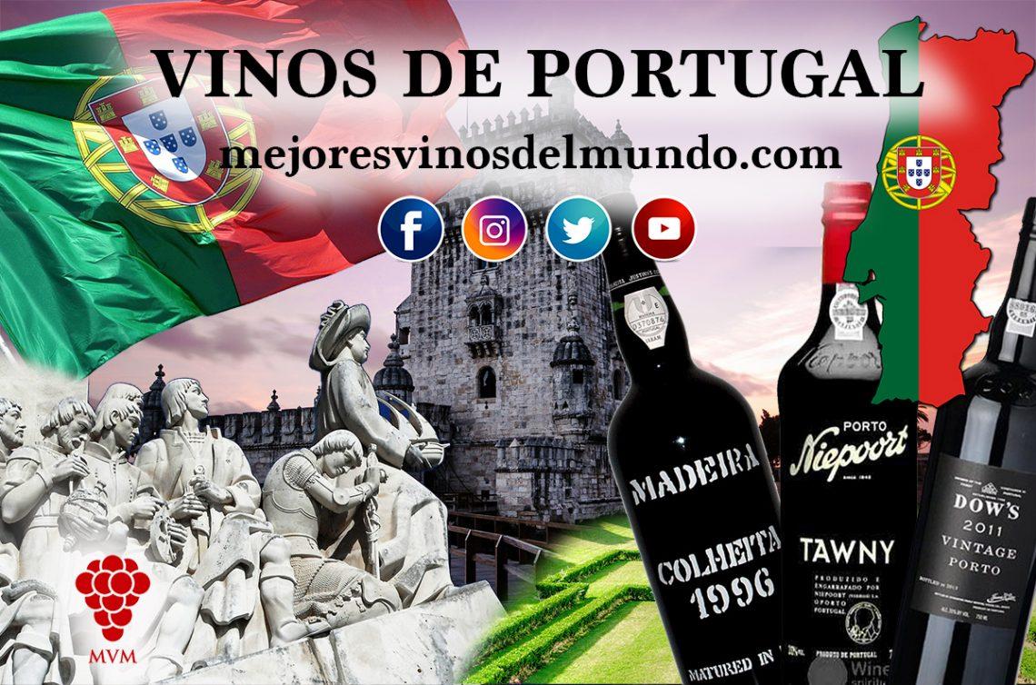 Los vinos de Portugal. Cuáles son sus regiones vinícolas. Cuáles son sus estilos de elaboración de vinos.