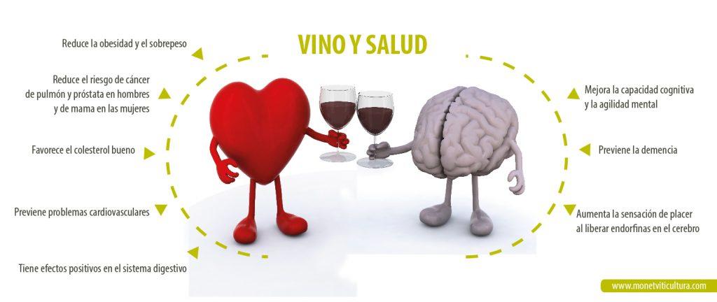 Una relación de efectos positivos del vino en la salud. Numerosos estudios universitarios aparecen cada año en el que se relaciona el consumo (moderado) con prevenión de distintas enfermedades o dolencias.
