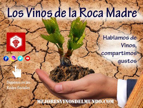 Los vinos de la Roca Madre. El terreno de cultivo determina las cualidades del vino que produce.