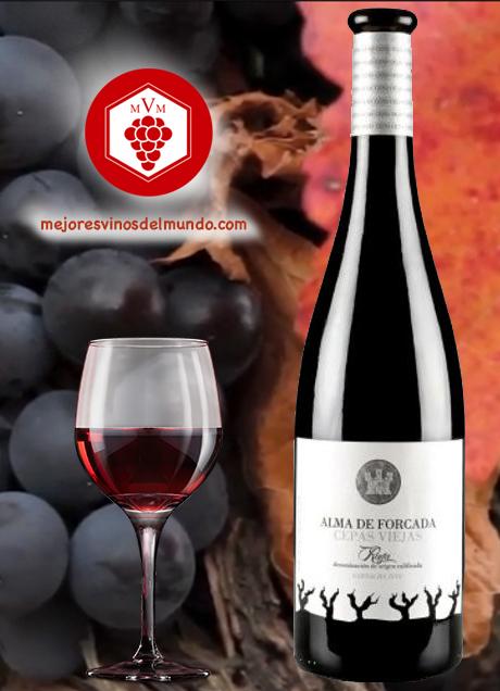 Alma de Bodegas Forcada relanza esta pequeña bodega familiar de Rincón de Olivedo en La Rioja. Cepas centenarias de Garnacha reconocidas por su gran calidad a través de uno de sus vinos. Alma De Forcada Cepas Viejas.