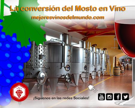 La conversión del mosto en vino es un proceso del que depende buena parte del éxito del futuro vino