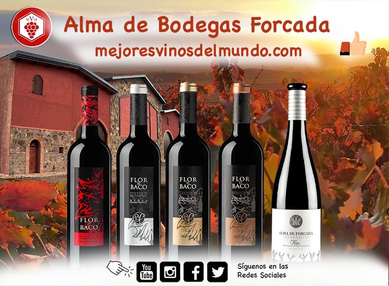 Alma de Bodegas Forcada es uno de los grandes vinos de esta familiar bodega riojana de Rincón de Olivedo. Viñas cultivadas a 800 metros de altitud, un clima singular en una zona reserva de la naturaleza.