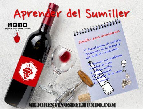 Aprender del Sumiller como maestros del protocolo del vino. Saber de la conservación, de la presentación y del maridaje ideal con cada alimento