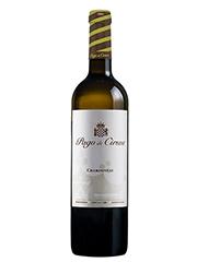 Pago de Cirsus es un vino blanco del Pago del mismo nombre. Calidad y garantía de esta bodega Navarra que crea seguidores de sus ricos vinos.