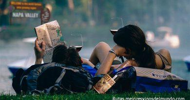 Las grandes Rutas del Vino están presentes en todos los continentes de la Tierra. Con un mismo objetivo, la elaboración del vino tiene sus matices en cada sitio. Por eso las rutas del vino es sinónimo de conocer gentes y costumbres.