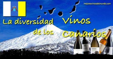 La diversidad de los vinos canarios es tal que sorprende a cualquier entendido. Se trata de unas islas que ha sido denominadas como el Jardín Botánico de la viticultura.