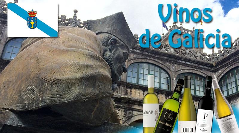 Vinos de Galicia, vinos del mundo desde muy antiguo. Los vinos de La Ribeira Sacra son conocidos desde los principios del Camino de Santiago.