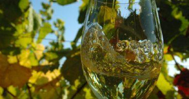 Los Ribeiro premiados en Decanter World Wine Awards