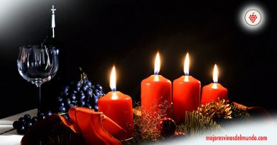 Mejores vinos para una extraña Navidad es una selección de los mejores para brindar por lo positivo de una Navidad en la que lo más importante, las familias, no van a poder reunirse de la manera habitual. Por ello, más que nunca, brindar por lo bueno que tenemos y que, sin duda, ¡volveremos a tener!