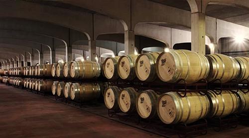 Las sucesivas ampliaciones de la Bodega Malón de Echaide han alcanzado una capacidad para albergar 14 millones de Kg de uva y disponen de 3000 barricas de roble para la crianza de vino.