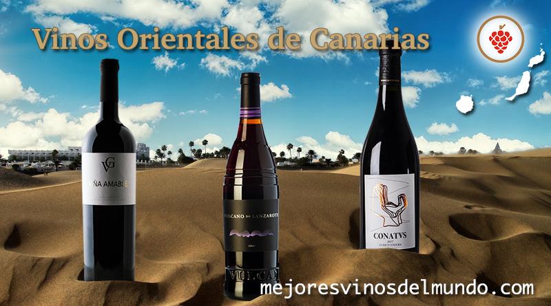 Los Vinos orientales de Canarias están pertenecen a las DO de Gran Canaria, Lanzarote y Fuerteventura. Vinos singulares, exclusivos y con personalidad reconocidos mundialmente.
