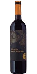 Hijos del Cierzo es un vino del Campo de Borja de las vriedades de Garnacha y Syrah cultivadas en las faldas del Moncayo. Un vino potente para días ventosos y lluviosos como el de la cata.