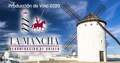 Producción de vino en DO La Mancha 2020 supone un incremento del 5,8% con respecto a 2019.