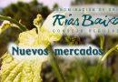 DO Rías Baixas promociona en nuevos mercados como son los países del Este de Europa, Rusia, República Dominicana y Taiwan.