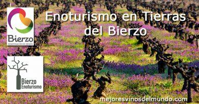 Enoturismo en Tierras del Bierzo es practicar un turismo casi integral. Donde La Cultura, la Historia y la Naturaleza van de la mano.