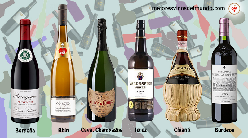 Diferentes modelos de botellas de vino entre los que destacan los más clásicos como Borgoña y Burdeos o los Champagne o Chianti sin olvidar los Modelos Rhin y por supuesto la botella típica de los vinos de Jerez.
